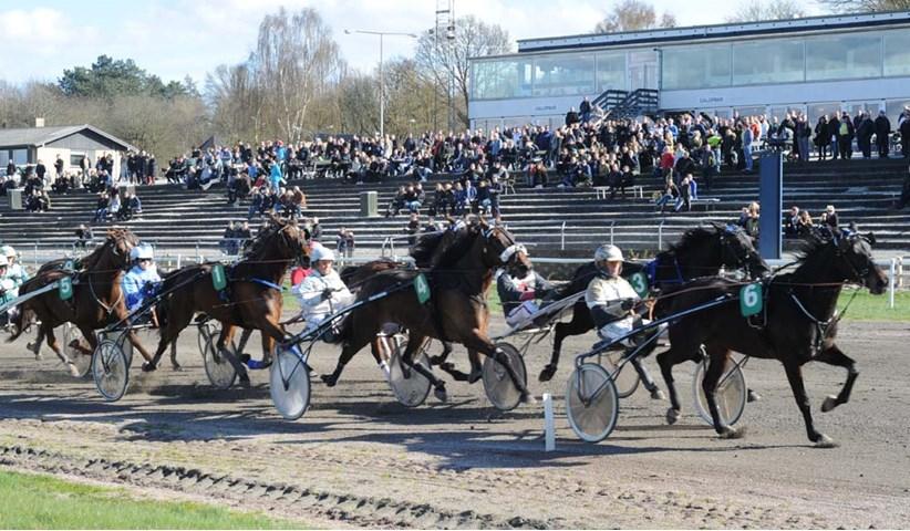 jydsk væddeløbsbane startliste