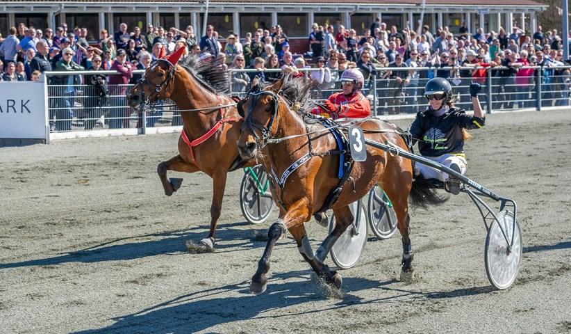 Kreativ sponsorpleje på Bornholm Dansk Hestevæddeløb