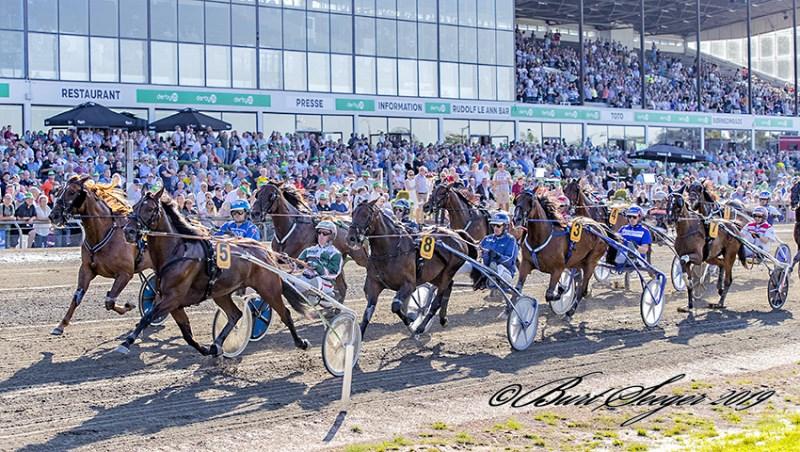 Wildcard – også i fremtiden Dansk Hestevæddeløb